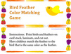 Bird Feather Color Matching Game